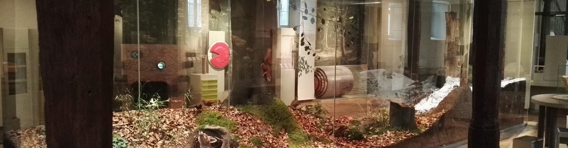 Ausstellung Biologische Vielfalt