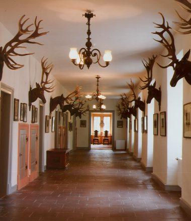 Besuch im MUSEUM Dauerausstellung