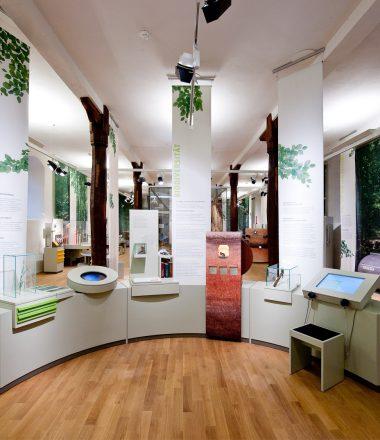 Besuch im bioversum Dauerausstellung