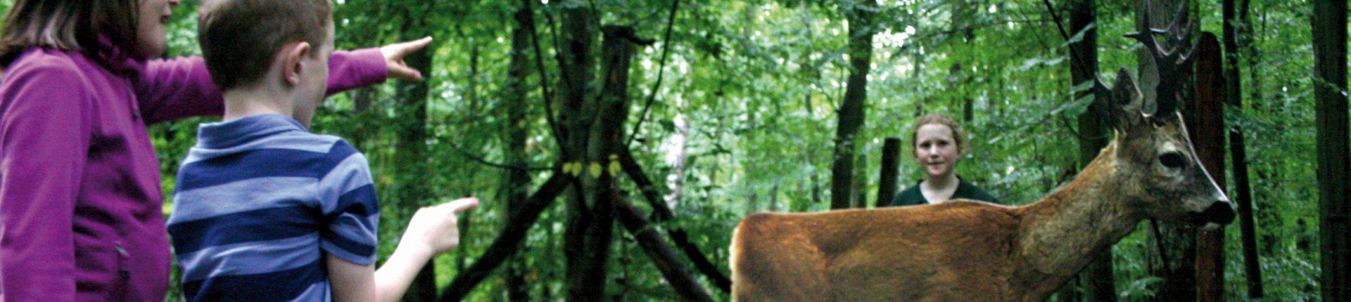 Jagdhistorische Pirsch